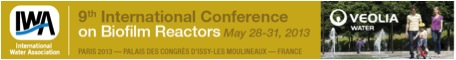 Konferensdeltagande
