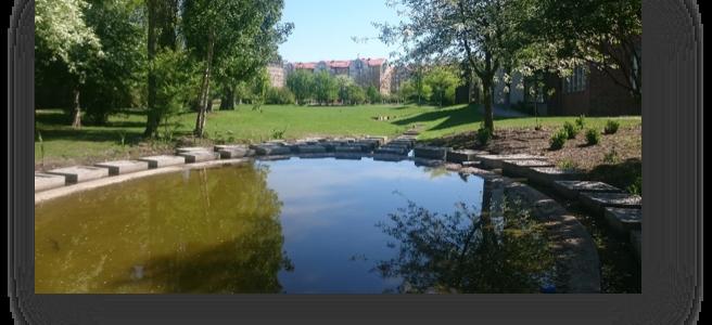 Seminarium i Lund om blå-gröna dagvatten-lösningars effektivitet