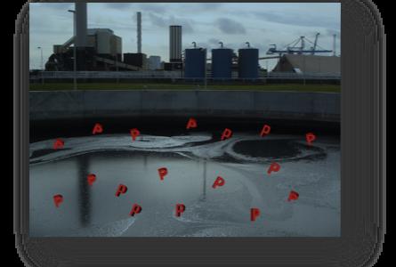 IWA Sverige-seminarium om fosforåtervinning från avloppsvatten i Malmö 11 april 2018