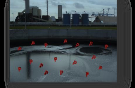 IWA Sverige-seminarium om fosforåtervinning från avloppsvatten